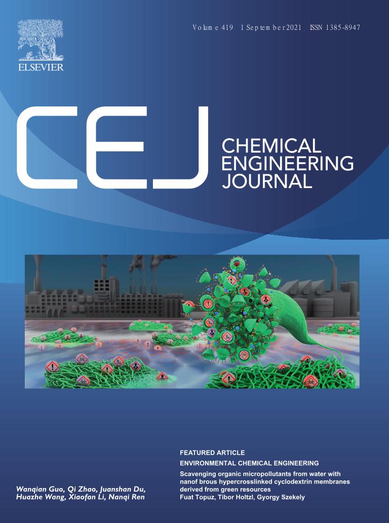 Cover CEJ